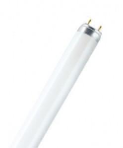 Лампы люминесцентные
